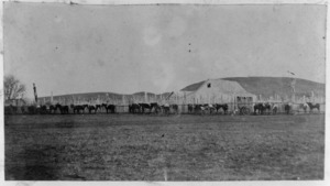Fence of Whakairo Pa, horses, and Chief Tareha's house, at Waiohiki, Hawke's Bay Region