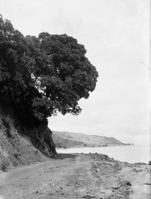 Coastline between Tapu and Thames, Coromandel Peninsula