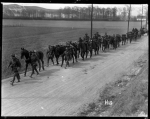 Some New Zealand artillery on the march