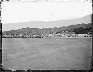 Wellington Harbour and Te Aro