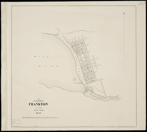 Plan of the town of Frankton [cartographic material] / C.B. Shanks, district surveyor, Mar. 1863 ; J. Douglas delt.