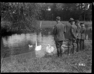 New Zealand army officers feeding swans in the grounds of a rest house, World War I