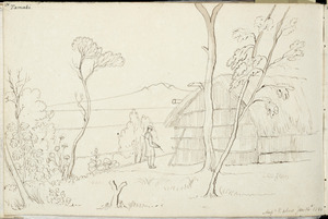 [Ashworth, Edward] 1814-1896 :Tamaki. Messrs Baber's Jan. 14th 1844.