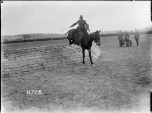 A mule jumper at a New Zealand Divisional sports competition, Authie