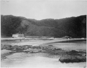 Creator unknown : Photograph of Days Bay taken by Muir and Moodie