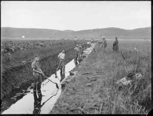 Digging drainage ditch, Kaitaia swamp