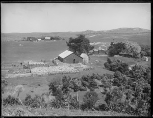 Shearing shed and farm buildings in Northland