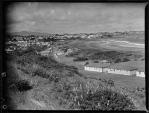 View of houses and beach, Taranaki