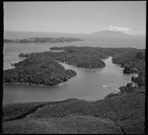 North Cove, Kawau Island