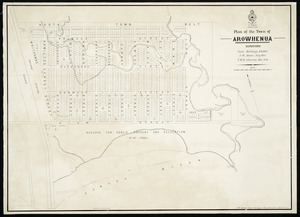 Plan of the town of Arowhenua [cartographic material] / [surveyed by] Sam Hewlings, Feb. 1864. F.W. Moore, July 1874. T.M.H. Johnston, Dec. 1878.