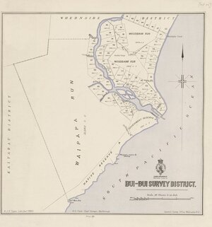 Bui-Bui Survey District [electronic resource].