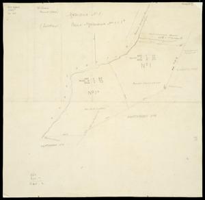 Buchanan, John Duncan Henry, 1902-1961 :Plan of Ngatarawa nos. 1 & 1a. [ms map]. Traced GDHB, [186-?]