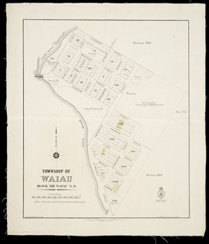 Township of Waiau, block XIII Waiau S, D. [cartographic material] / drawn by J.G. Kelly.