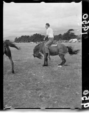 Rodeo at Upper Hutt