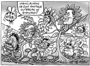 """""""Spring blooms or just another outbreak of didymo? 7 October, 2008"""