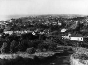 View over New Plymouth