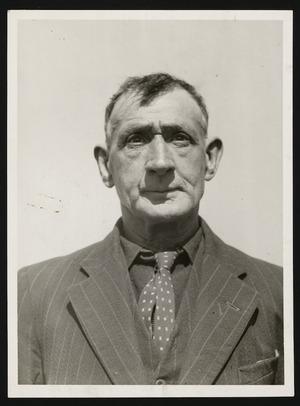 William Murphy, rat catcher of Wellington