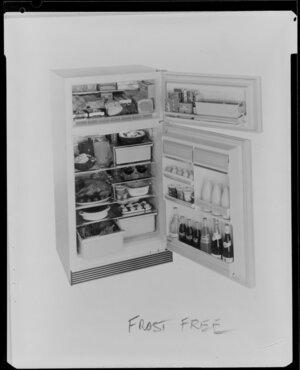 Interior of Fridge