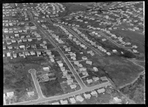 Mount Roskill, Auckland, development for Smiths Estate Ltd