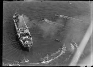Arrival of ship, Wanganella, in Auckland Harbour