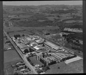 Auckland Farmers' Freezing Co-operative Ltd [AFFCO], Moerewa