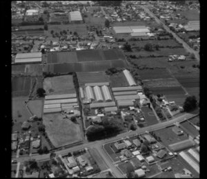 Horticultural land in Favona, Mangere, Auckland