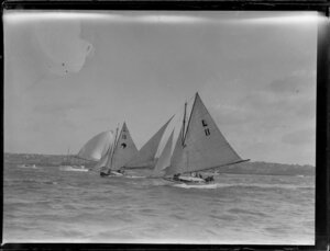 Yacht racing on the Auckland Harbour
