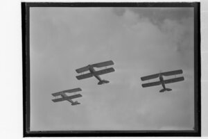 DH Tiger Moths in formation at the Waikato Air Pageant
