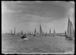 Trans-Tasman yacht race, Auckland harbour