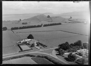 Homestead and farm, Mangere area