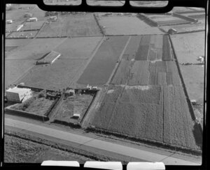 Rural property and gardens, Papatoetoe, Auckland