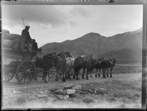 Horses and a cart, Otago