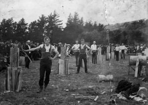The 1st woodchopping contest in Upper Hutt