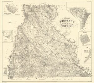 Map of Hokonui Survey District, Southland, N.Z. [electronic resource].
