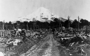 Cleared land, with Mount Taranaki in the background
