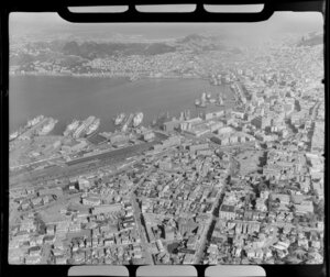 Wharves and city of Wellington