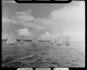 Auckland Anniversary Regatta, Auckland Harbour, showing sailing boats