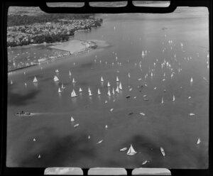 Auckland Regatta, yachts on Auckland Harbour