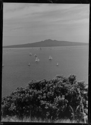 Yachting regatta from Bastion Point, Mission Bay, Auckland, showing Rangitoto Island