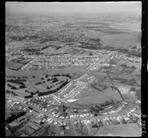 Mount Roskill, Auckland, showing housing