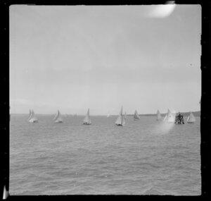 Yachting, Auckland Harbour Regatta