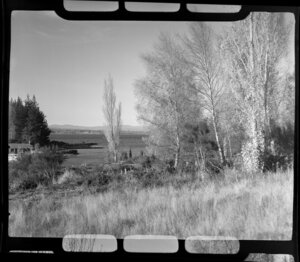 Lake Taupo, Taupo, showing rural area and part of a house