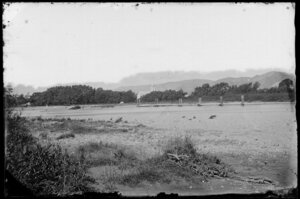 River, showing a roof and steeple of a church set among trees on far side, and a jetty, probably Hutt Valley
