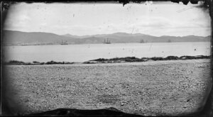 View from Oriental Bay looking towards Thorndon, Wellington, showing four large ships sailing in Lambton Harbour