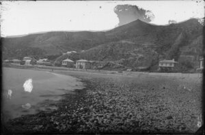 Oriental Bay, Wellington, showing beach and houses