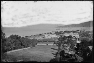 Looking southeast across Thorndon, including gardens in foreground, and ships in Wellington Harbour