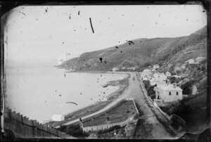Oriental Bay, Wellington, from Oriental Terrace, showing houses, boat sheds, and grassy fenced area at base of terrace
