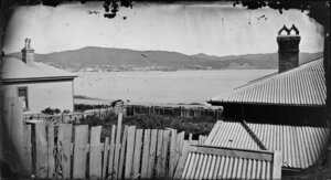 A view across a fenced yard and house roofs, to Oriental Bay, Wellington, with Thorndon in distance across harbour
