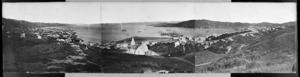 Panorama of Wellington