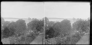 Garden at photographer William Williams and Lydia Myrtle Williams' Royal Terrace house, Kew, Dunedin, Otago Region